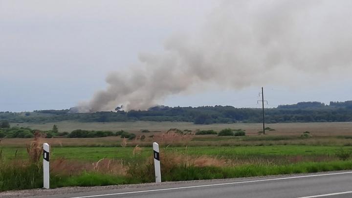 Дым виден за километры: в Ярославской области загорелся мусорный полигон