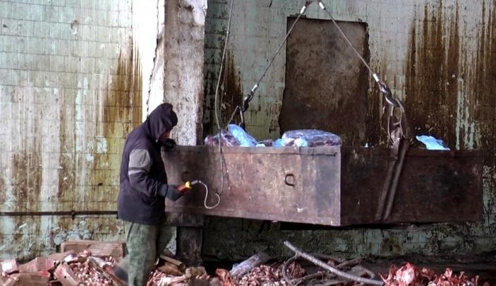 В Самарской области огородили скотомогильник, в котором обнаружили Сибирскую язву