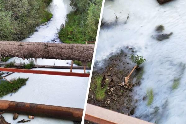 На необычный цвет воды в реке Туле новосибирцы обратили внимание в конце августа