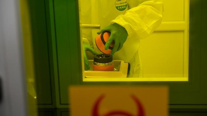 «Создание иммунной прослойки займет время»: эпидемиолог — о сокращении числа заболевших в два раза