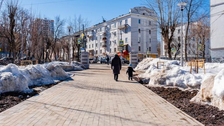 В Пермский край придет самая сильная оттепель за всю зиму: воздух прогреется до +5 градусов
