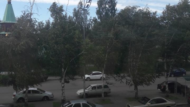 На Курганскую область надвигается порывистый ветер