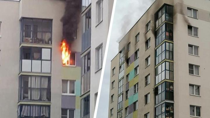 Оставили сына одного, он решил пожарить сосиски: в Академическом загорелась квартира