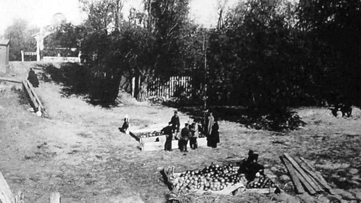 Как в Омске 100 лет назад арбузы продавали: смотрим на архивную фотографию