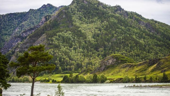 После смертельного сплава за новосибирскими туристами отправили конную полицию — в горах застряли 5 человек