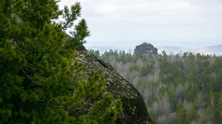 «Были слышны крики о помощи»: в жаркий день туристы забрались на скалы «Столбов» и застряли там