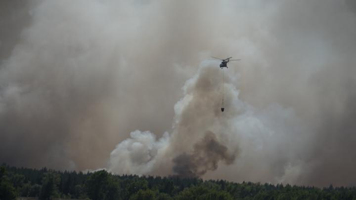 Некуда тикать: как огонь выжигает дома и лес в Тарасовском районе. Репортаж 161.RU