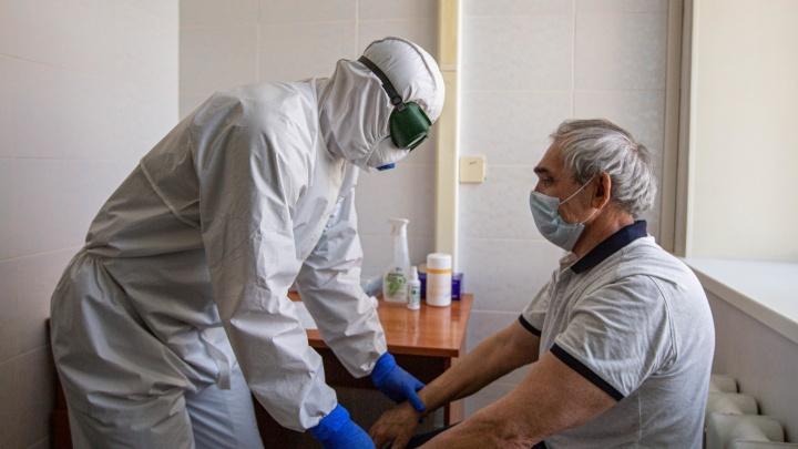 В Новосибирской области за сутки коронавирус обнаружили у 183 человек