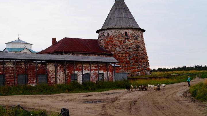 Для Соловков подготовят мастер-план по решению проблем архипелага