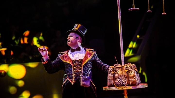 На Масленой неделе ростовчане смогут посетить грандиозную цирковую программу «Аливрувер» всего за 600 рублей