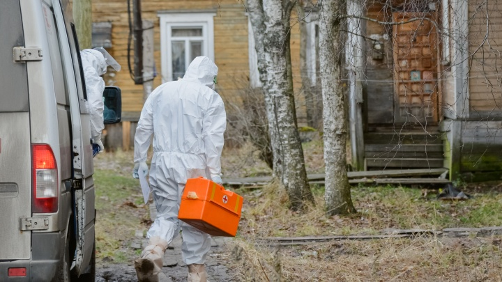 За сутки в Архангельской области выявили 345 случаев COVID-19. Данные регионального оперштаба