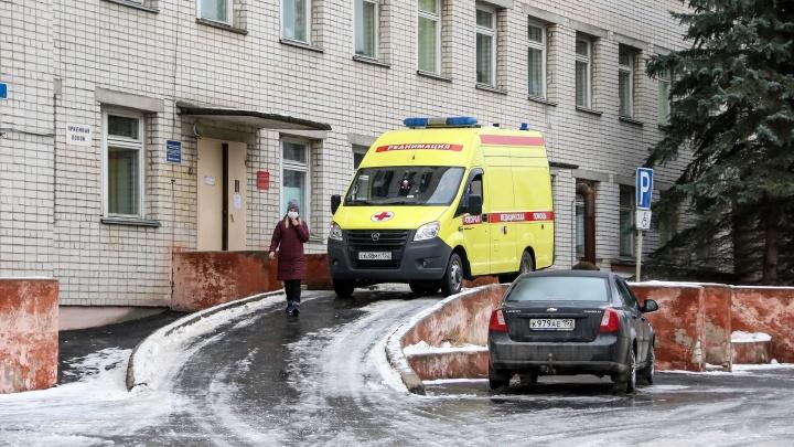 Нижегородская область подошла к отметке в 55 тысяч зараженных. За сутки заболели 462 человека
