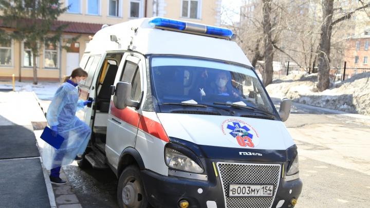 В Новосибирске за сутки в больницу положили двух детей после возвращения из-за границы