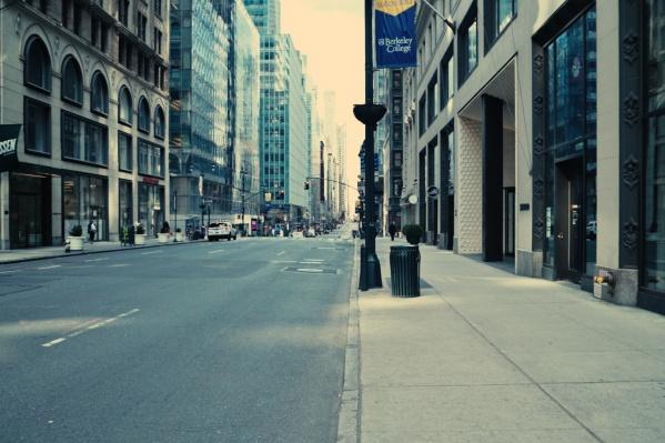 Когда-то один из самых оживленных городов планеты, Нью-Йорк, сейчас пустует