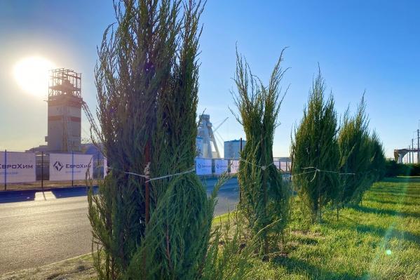 Компания «ЕвроХим» вкладывает значительные средства в поддержание экологического баланса в регионах присутствия своих предприятий