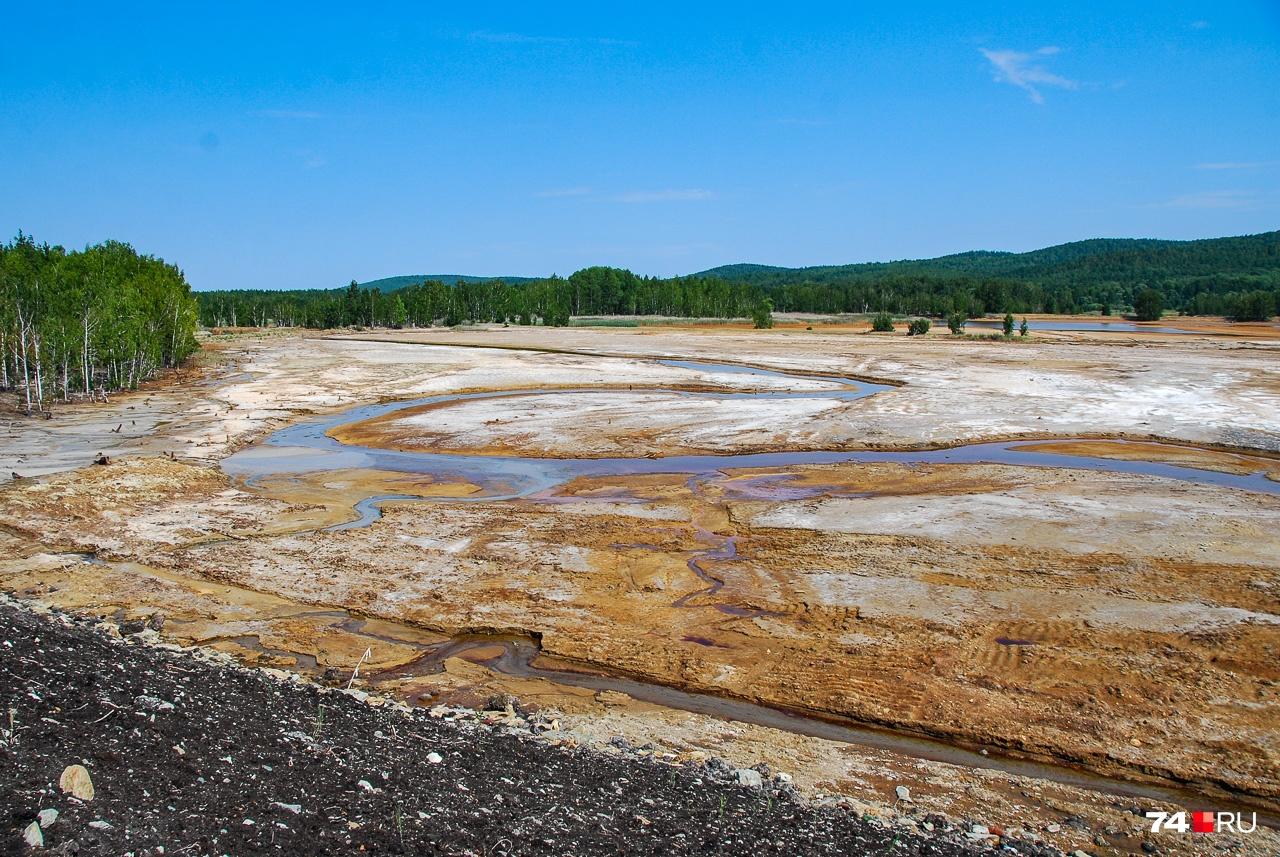 Пространство за плотиной — это сеть мелких ручейков, которые текут по мёртвой земле
