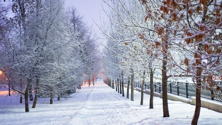 В Челябинск пришли морозы. Будут ли отменять занятия в школах