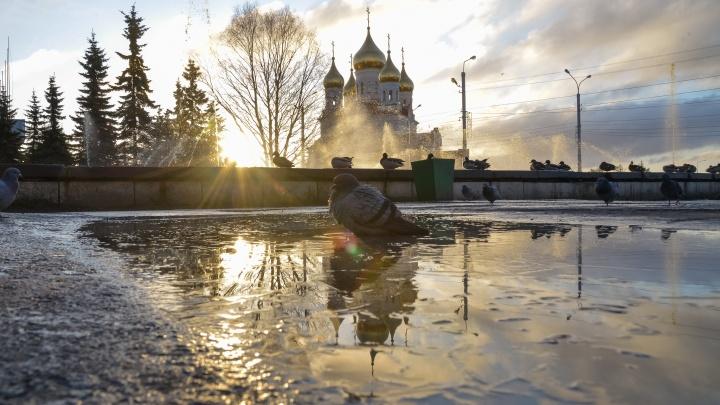 Зима потихоньку возвращается: какой будет погода в выходные в Архангельской области