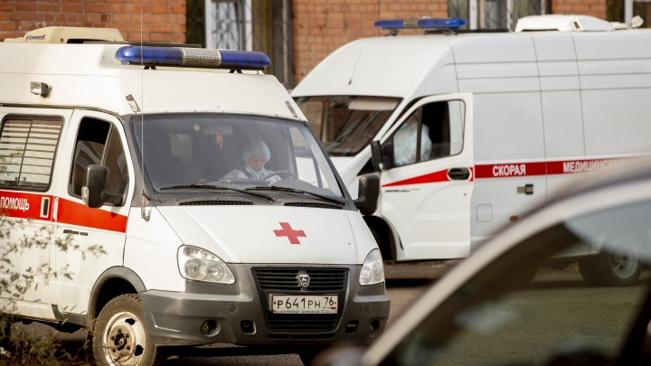 Хватит ли на всех COVID-коек: как менялось число госпитализированных больных в Ярославле