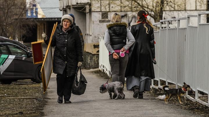 Свердловские полицейские начали ловить нарушителей режима самоизоляции