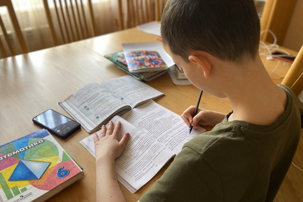 Родители в Курганской области заговорили о невозможности нормально делать уроки с детьми на дистанционном обучении