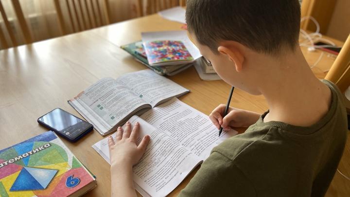 Зауральцы жалуются на проблемы с дистанционным образованием детей