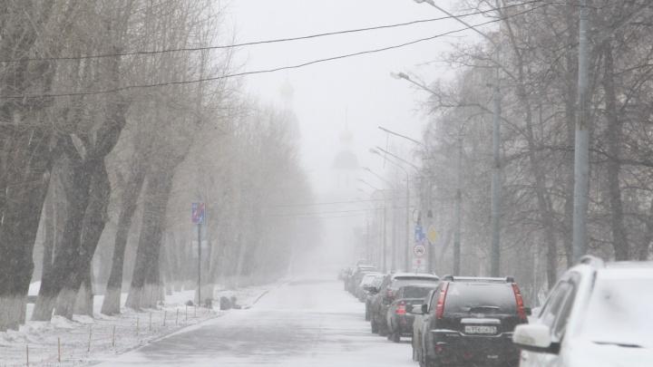 «Мы породим коллапс»: глава Архангельска высказался против закрытия набережной от машин