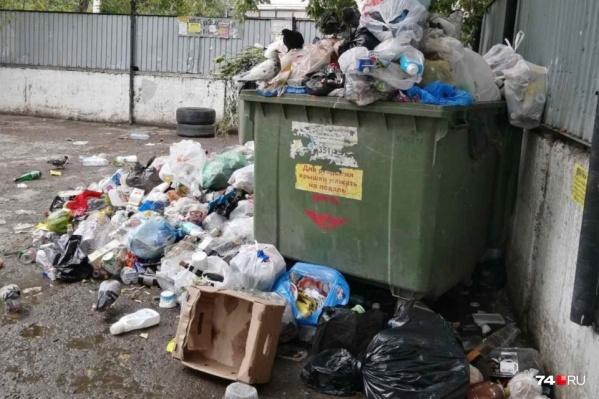 Во дворах в разных районах Челябинска накопились горы отходов