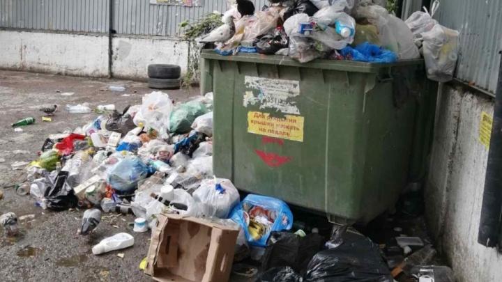 В Минэкологии Челябинской области отреагировали на проблемы с вывозом мусора