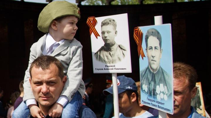 Минобороны РФ собирает в Волгограде данные участников войны для всероссийской «Дороги памяти»