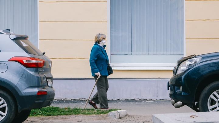 В Северодвинске льготный проезд для пенсионеров старше 70 лет вернут с 1 сентября