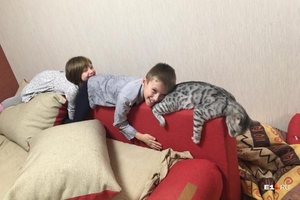 Главная задача — спасти кота от детей на карантине