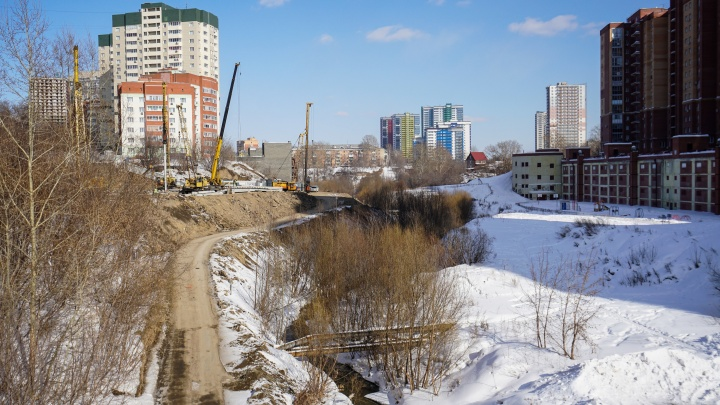 «В Москве живут люди, а здесь нелюди?». Как бывшая учительница пытается отстоять парк