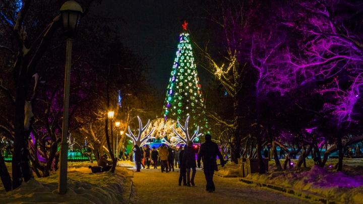 Стала известна дата установки новогодней елки на площади Ленина