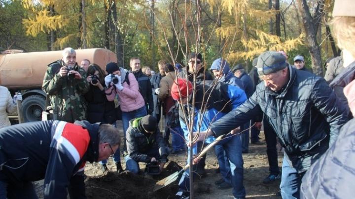 В Омске выбрали место для сада, где будут высаживать деревья в память о погибших в войне