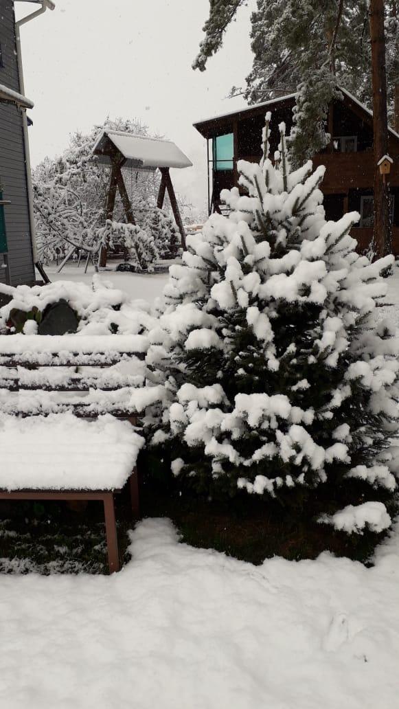 При этом некоторые в соцсетях задаются вопросом, растает ли ещё этот снег?<br>