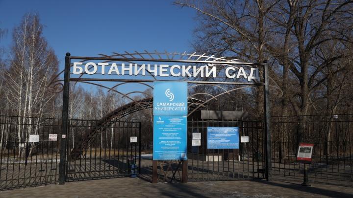 В Самаре закроют для посещения Ботанический сад