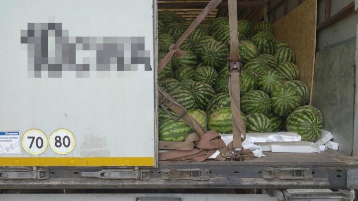 На границе Зауралья задержали десятки тонн арбузов и лука