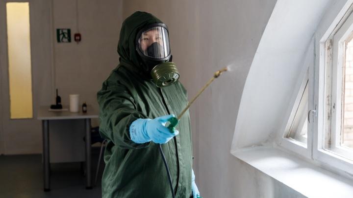 Дезинфекция квартир и прожарка гаджетов: как обезвреживают коронавирусных больных в Волгограде