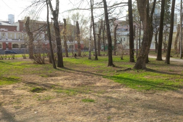 Сад Вайнера попадает в зону строительства нового зала филармонии