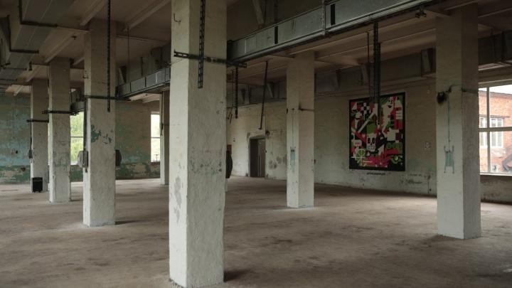 Будет как в Новой Голландии: демидовский завод на Урале заселят хипстеры и свободные художники
