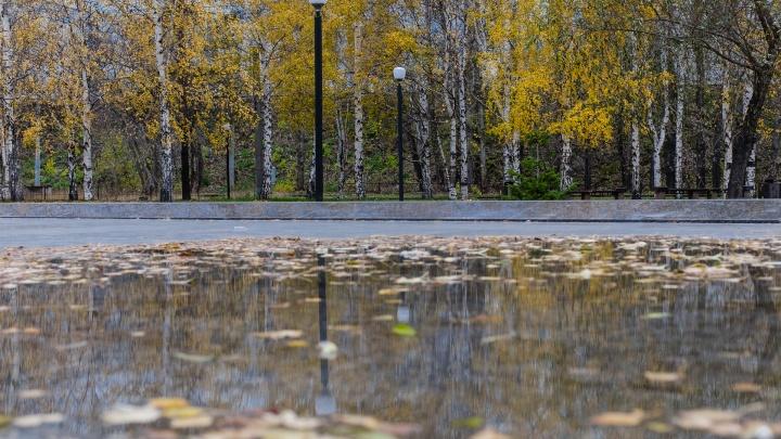Середина сентября в Прикамье будет холодной и дождливой. Будет ли бабье лето?