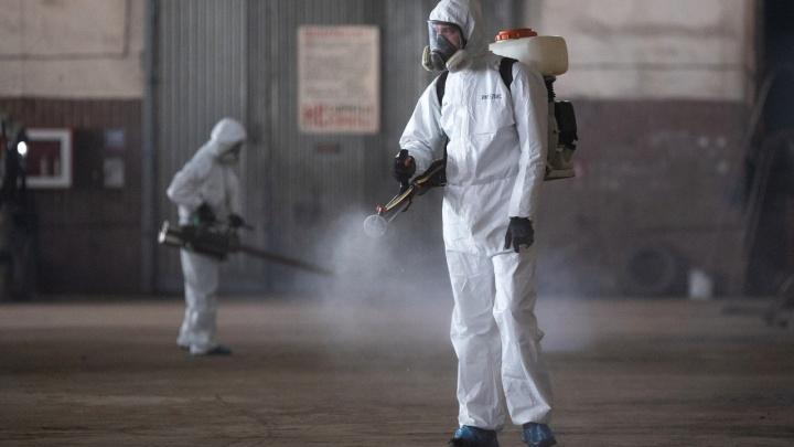 Еще три смерти за сутки: коронавирус продолжает убивать волгоградцев