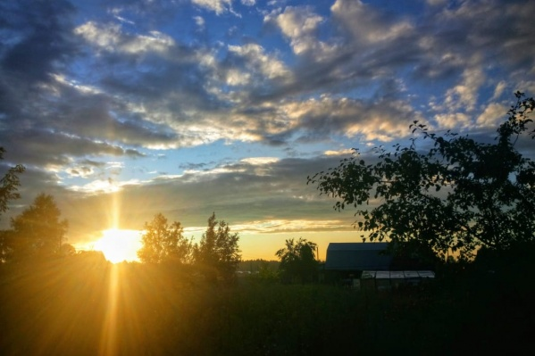 Закат в Коченёвском районе