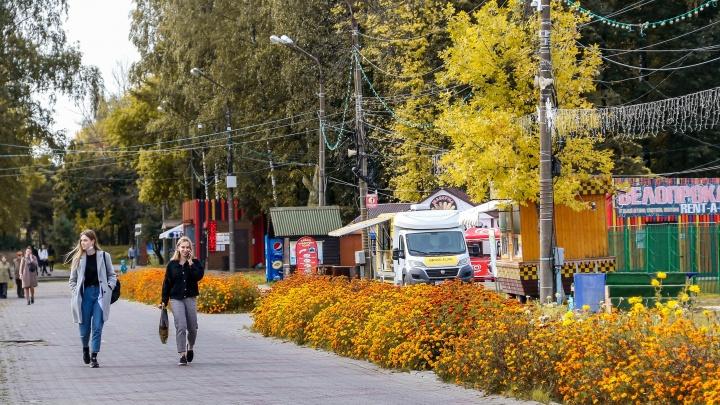 Октябрь крадется незаметно: 10 осенних снимков с улиц Нижнего Новгорода