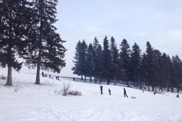 На базах катаются не только на лыжах, но на «ватрушках» со снегокатами