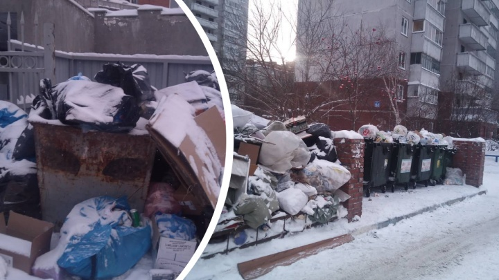 Центр Новосибирска завалили мусором — его не вывозят с контейнерных площадок