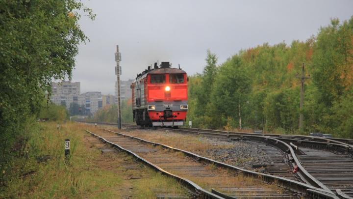 В расписании «РЖД» появился пригородный поезд, который свяжет центр Архангельска и Сульфат