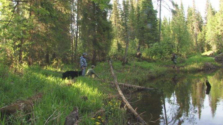 Прочесывали ночью берег реки и лес: в Прикамье полицейские нашли двух мальчиков, не вернувшихся с рыбалки