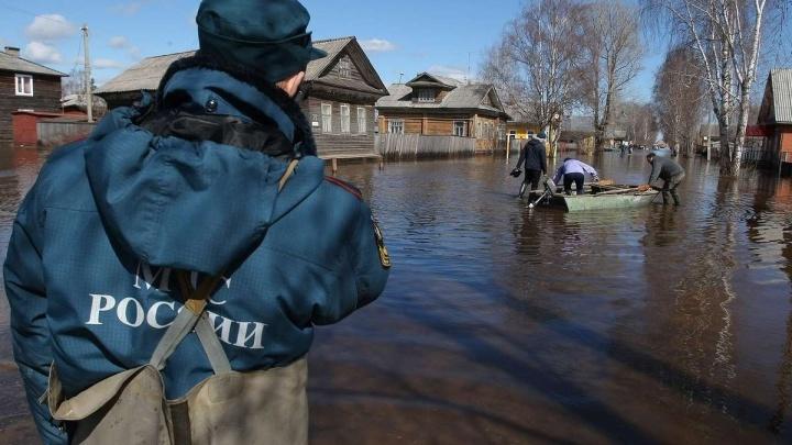 Магнитные бури, потопы и клещи: предупреждение спасателей об апрельских невзгодах Красноярска